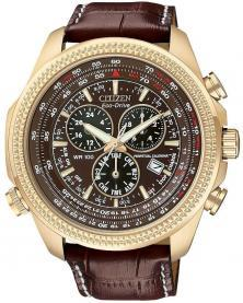Citizen BL5403-03X Perpetual Calendar  watch